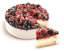 dort s lesním ovocem 1200g